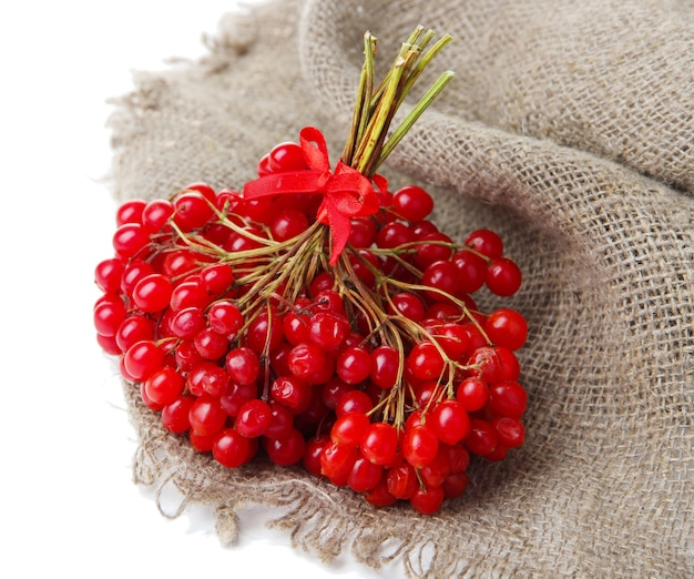 Красные ягоды калины на салфетке, изолированные на белом