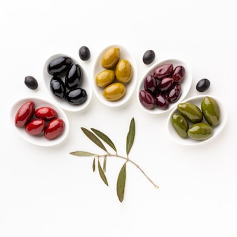 Red black yellow purple olives on plates with leaves