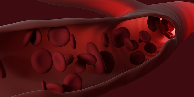 Red blood cells flowing through the veins