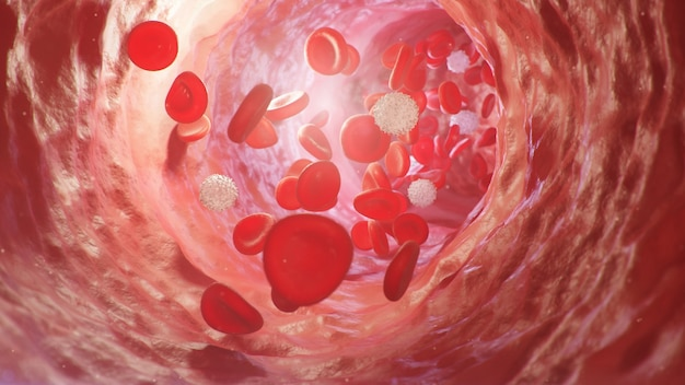 Red blood cells inside an artery, vein. flow of blood inside a living organism. scientific and medical concept. transfer of important elements in the blood to protect the body. 3d illustration