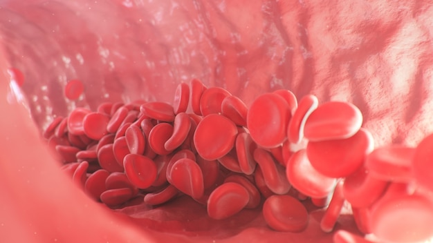 Red blood cells inside an artery vein flow of blood inside a living organism scientific and medical concept transfer of important elements in the blood to protect the body d illustration