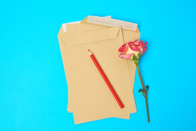 Red blooming rose and brown paper envelope on a blue space