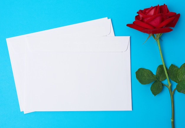 Red blooming rose and white paper envelope on a blue background, top view