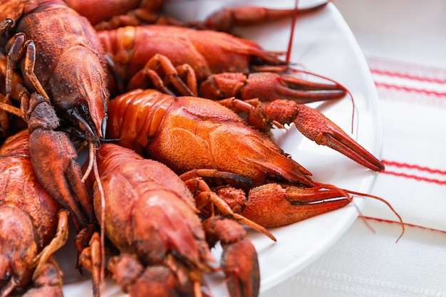 Red boiled lobsters on a white plate