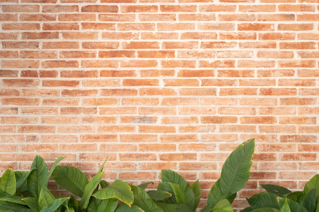 Red brick wall texture with green leaves plant decoration, interior design retro grunge