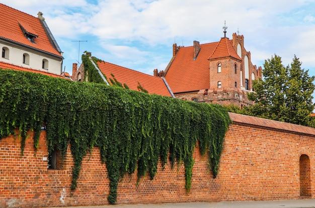 トルンポーランドの植物と中世の建物のある赤レンガの壁8月