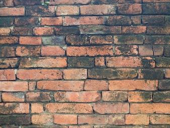 赤レンガの壁。