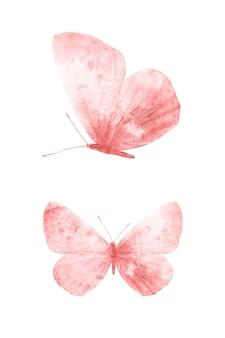 白い背景で隔離の赤い蝶。熱帯の蛾。デザインのための昆虫。水彩絵の具