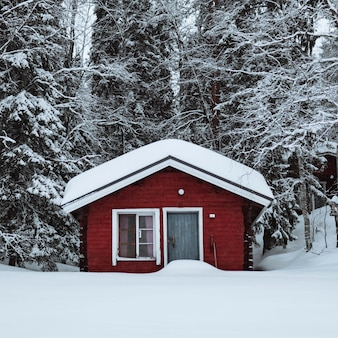 Red cabin in a snowy forest