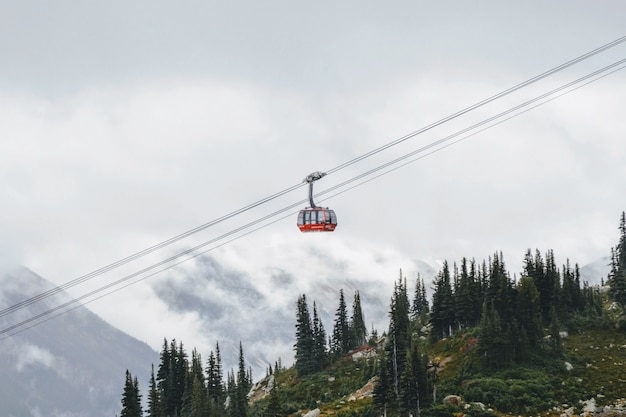 Red cable car going up the mountain with pine trees