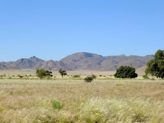 Red canyon in namib desert, sossusvlei, namibia