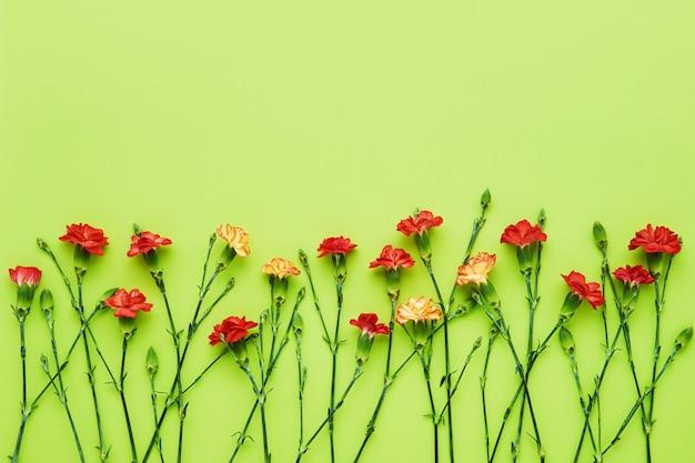Красные цветы гвоздики на зеленом фоне.