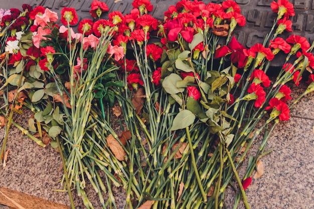 Красные гвоздики возле памятника как символ памяти.