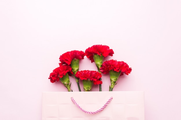 Red carnations on pink background with copy space. mother's day card, valentine's day.