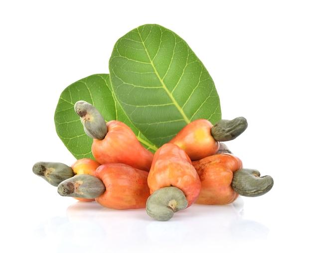 Red cashew fruit isolated on white background