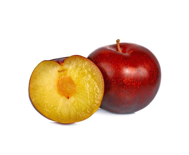 白に赤い桜梅