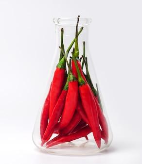 Red chili pepper in the beaker