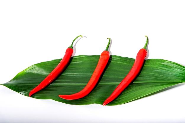 Красный перец чили на зеленом листе на белом фоне