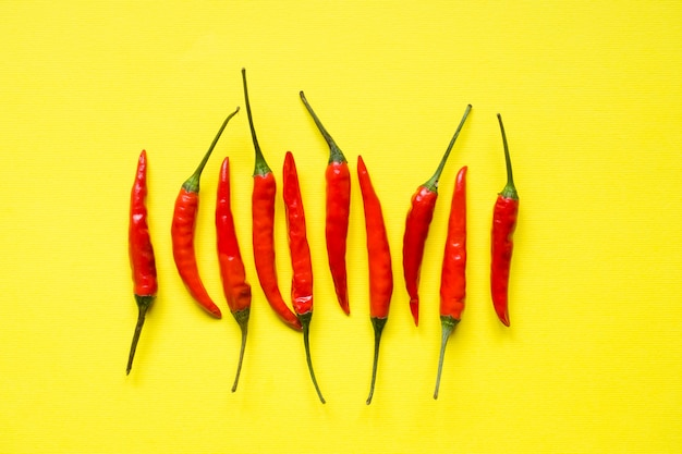 Red chili pepper pods on bright yellow background