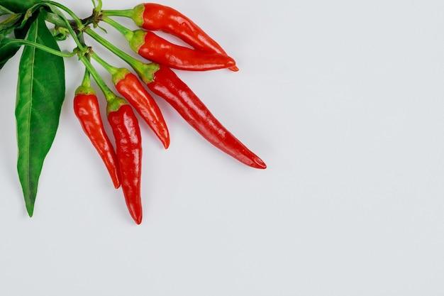 Красный перец чили с листьями, изолированными на белом.
