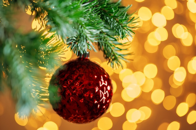 Red christmas ball hanging on fir tree branch over golden bokeh background lights