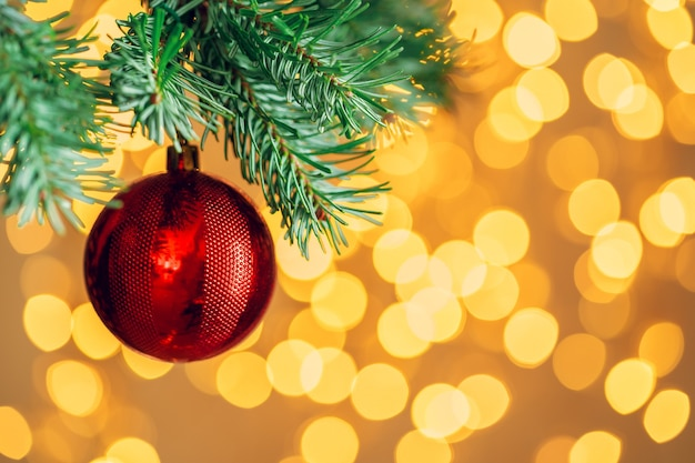 Red christmas ball hanging on fir tree branch over golden bokeh lights background