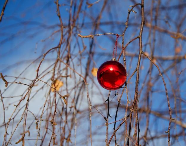 白樺の枝にぶら下がっている赤いクリスマスボール、新年のコンセプト、森のクリスマス
