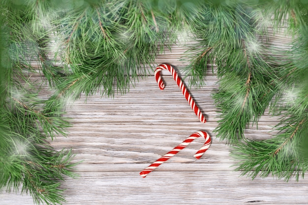 Red christmas candy canes and branches of christmas tree on wooden background