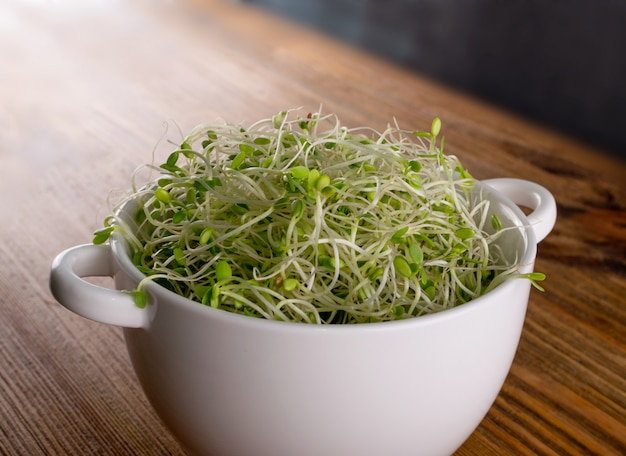 Red clover sprouts in a ceramic bowl