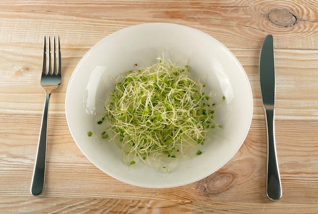 레드 클로버 콩나물, 루체른, 무 콩나물 샐러드 나무 테이블에 흰색 레스토랑 그릇에. 원시 다이어트 식품에 대한 발아 야채 씨앗, 마이크로 녹색 건강한 식생활 개념