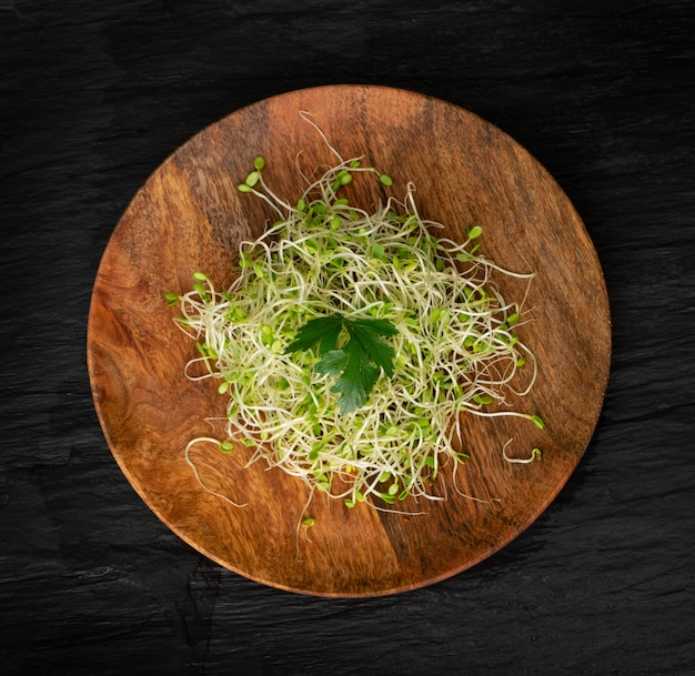 Red clover sprouts on a wooden plate