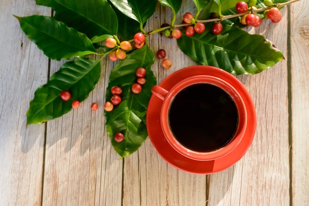 Red coffee cup with leaves and coffee seeds on wooden table. top view.