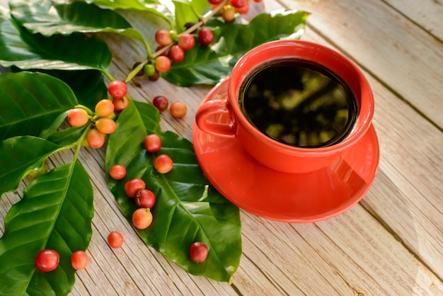 Red coffee cup with leaves and coffee seeds on wooden table top view