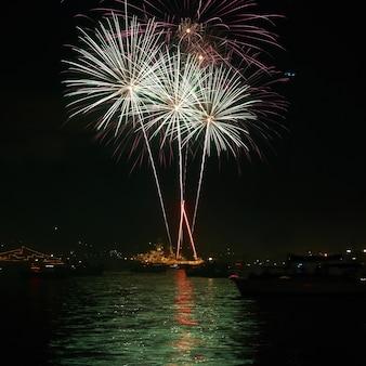 검은 하늘에 붉은 화려한 휴가 불꽃 놀이.
