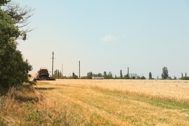麦畑の赤いコンバイン。農業と農業
