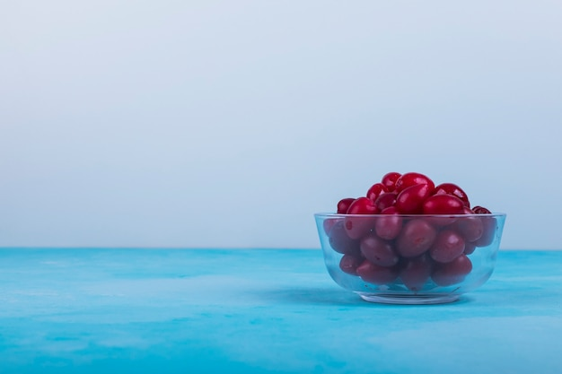 Red cornels in a glass cup on blue.
