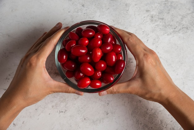 Red cornels in the glass cup in the hand of a person.
