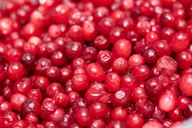Красный фон клюквы свежие красные ягоды традиционные для рождества