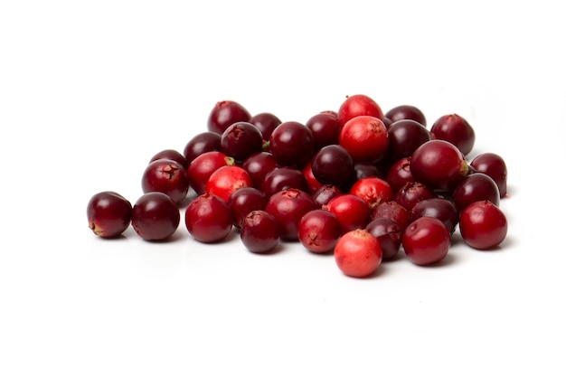 Red cranberry berry isolated on a white background.