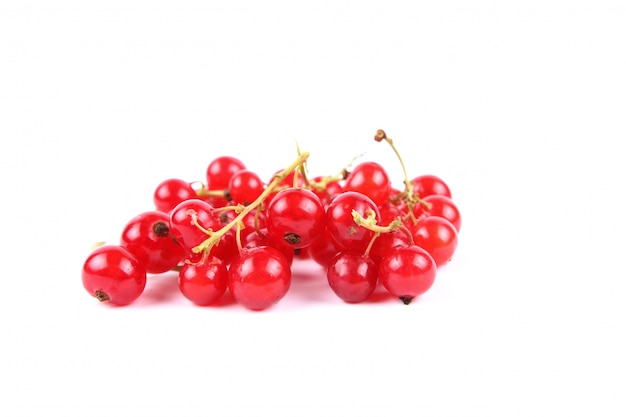 Red currant berries on a white background