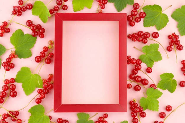 Red currant berry. berry frame.