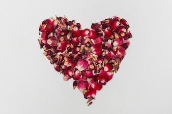 花びらの赤の装飾的な心