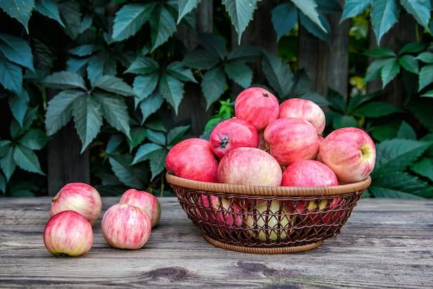 Красные вкусные яблоки в плетеной посуде на деревянной поверхности на фоне зеленой листвы