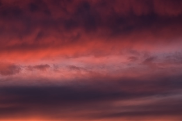 空に赤い劇的な夕方の積雲の雲。夕暮れ時のカラフルな曇り空。空のテクスチャ、抽象的な性質の背景