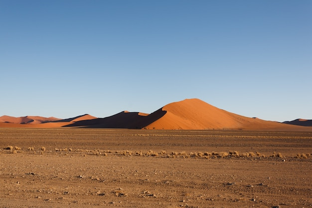 Red dunes on the road to sossusvlei, namibia