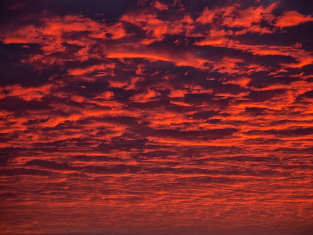 Red evening sky. colorful cloudy sky at sunset. sky texture, abstract nature background