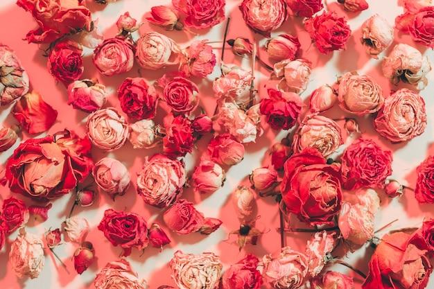 붉은 꽃 축제 패턴 디자인. 모듬 장미 머리 무작위 배열.