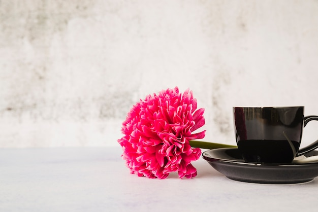 Red flower with ceramic black cup and saucer against white wall