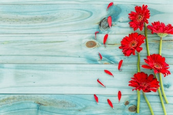 Red flowers on blue wooden desk