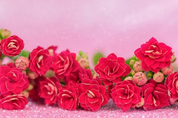 Красные цветы на розовом фоне